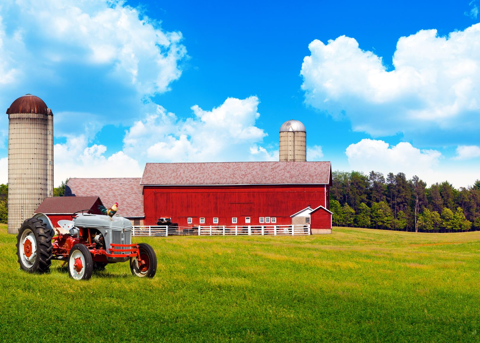 Farm & Ranch Insurance
